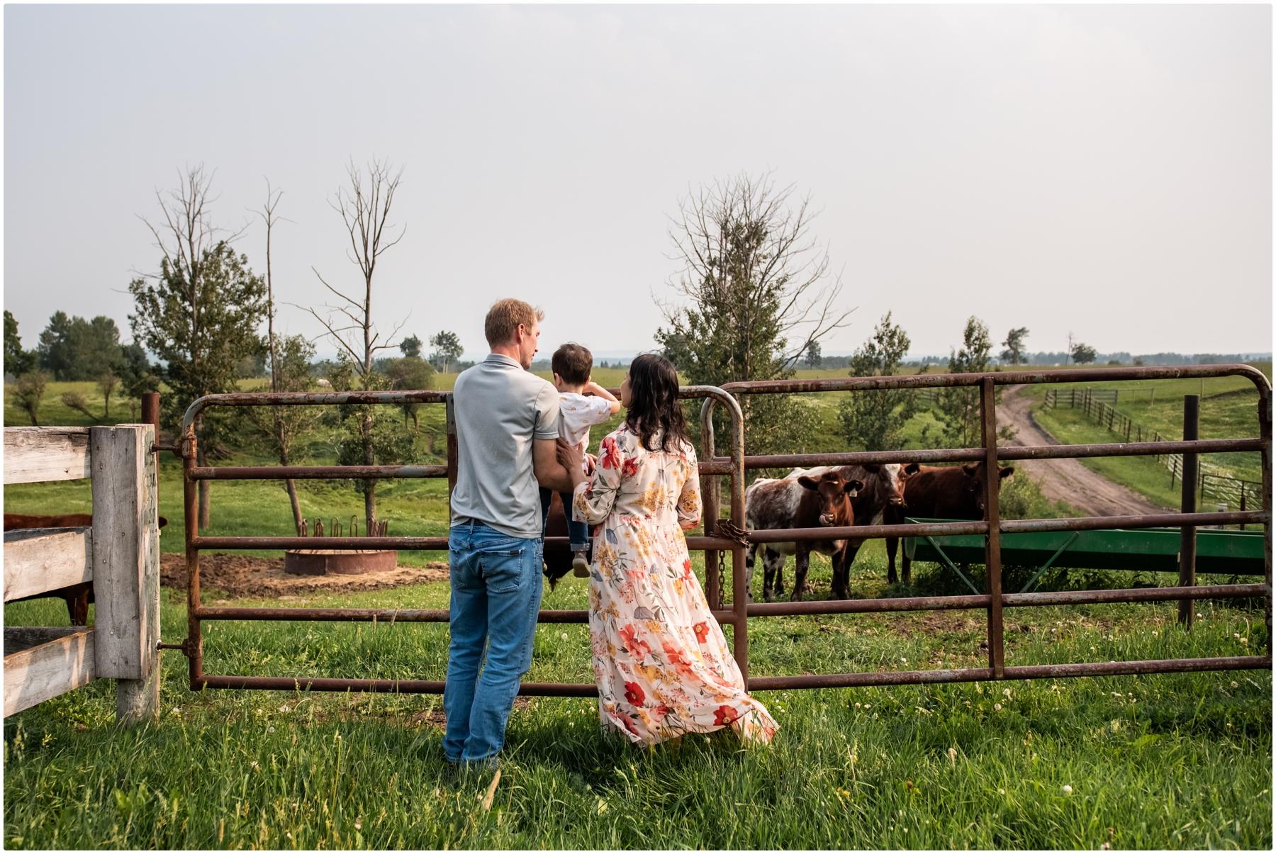 Calgary Family Farm Photography