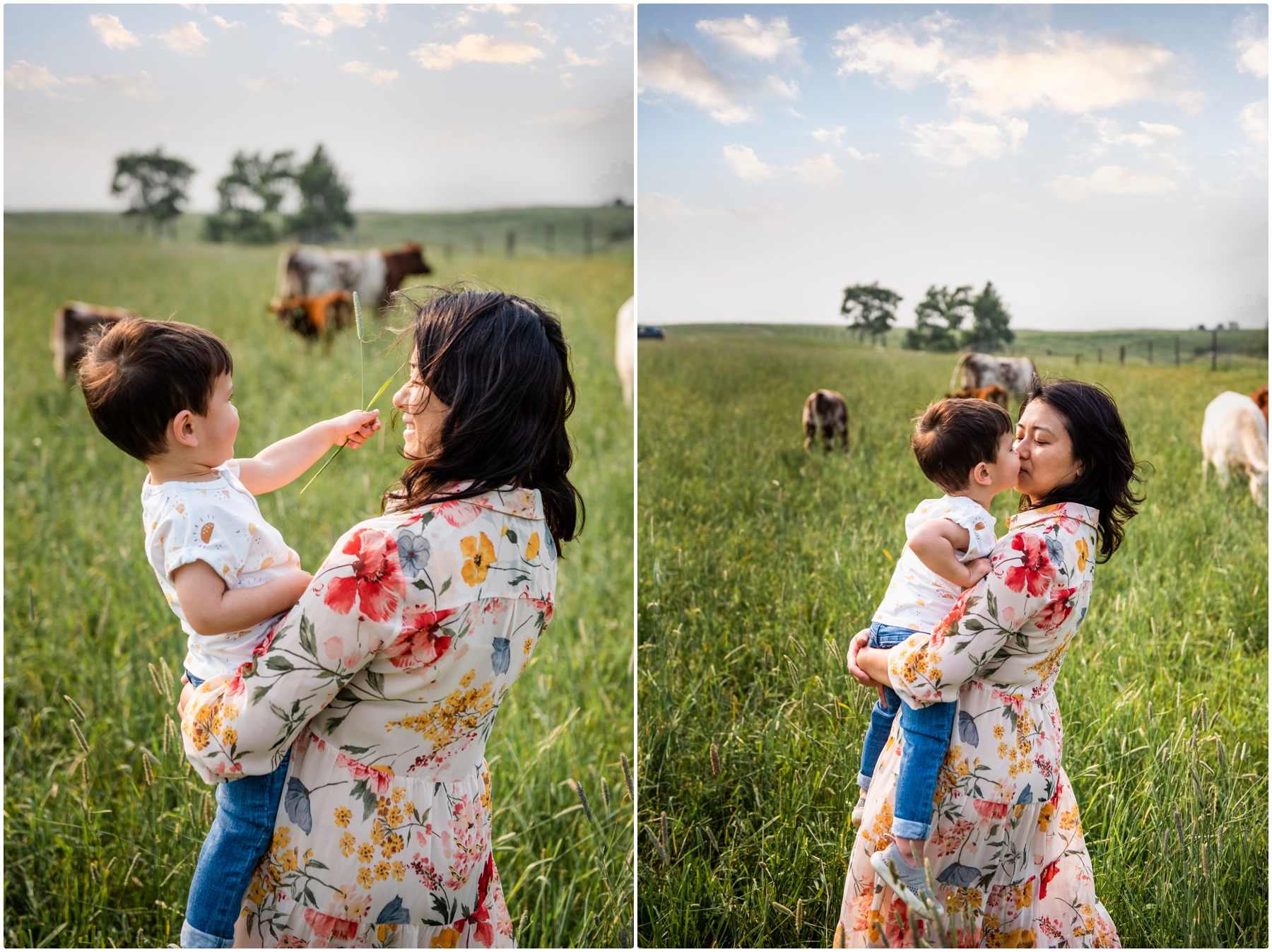 Farm Family Photographers Calgary