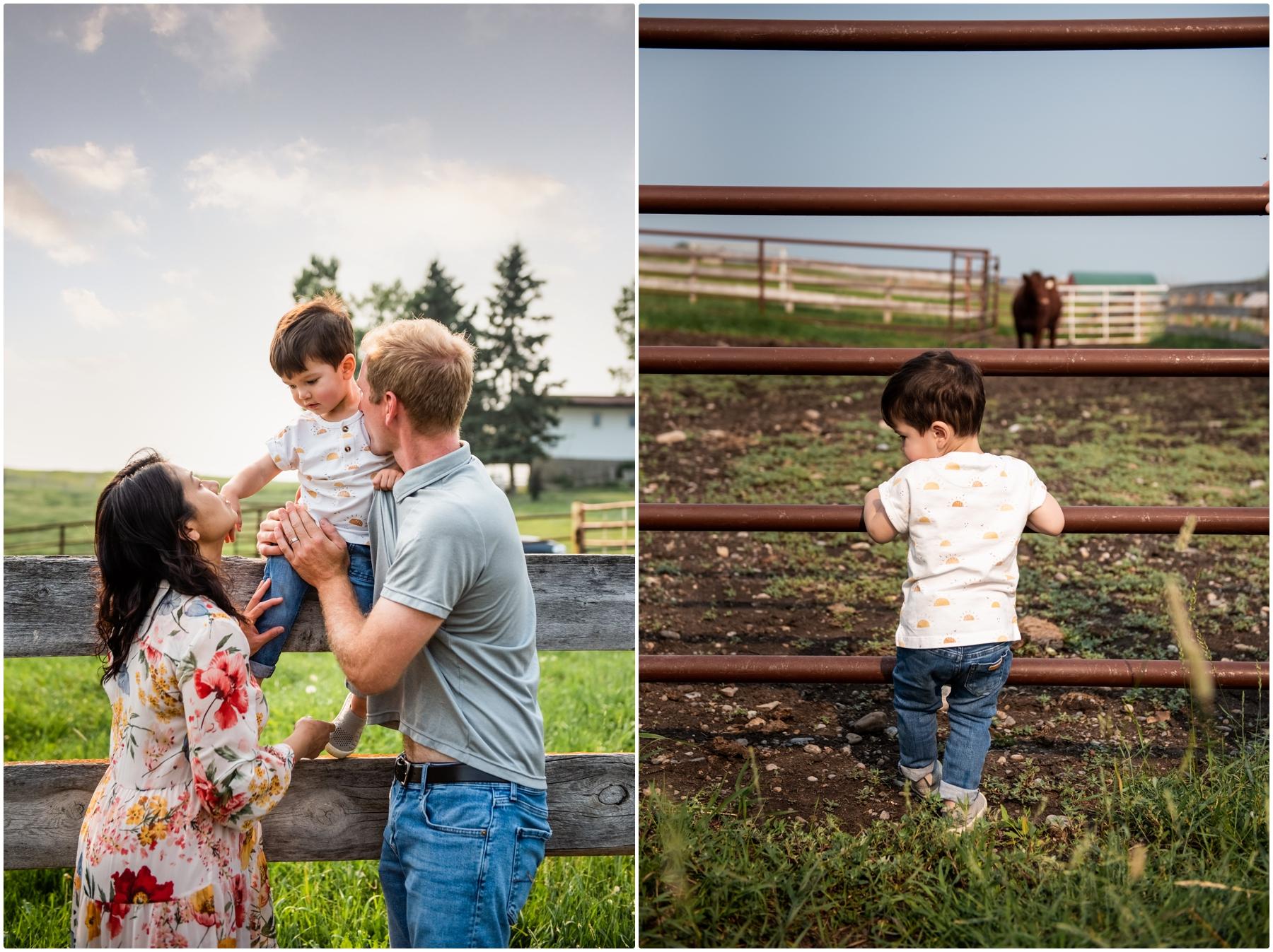 Farm Family Photography Calgary