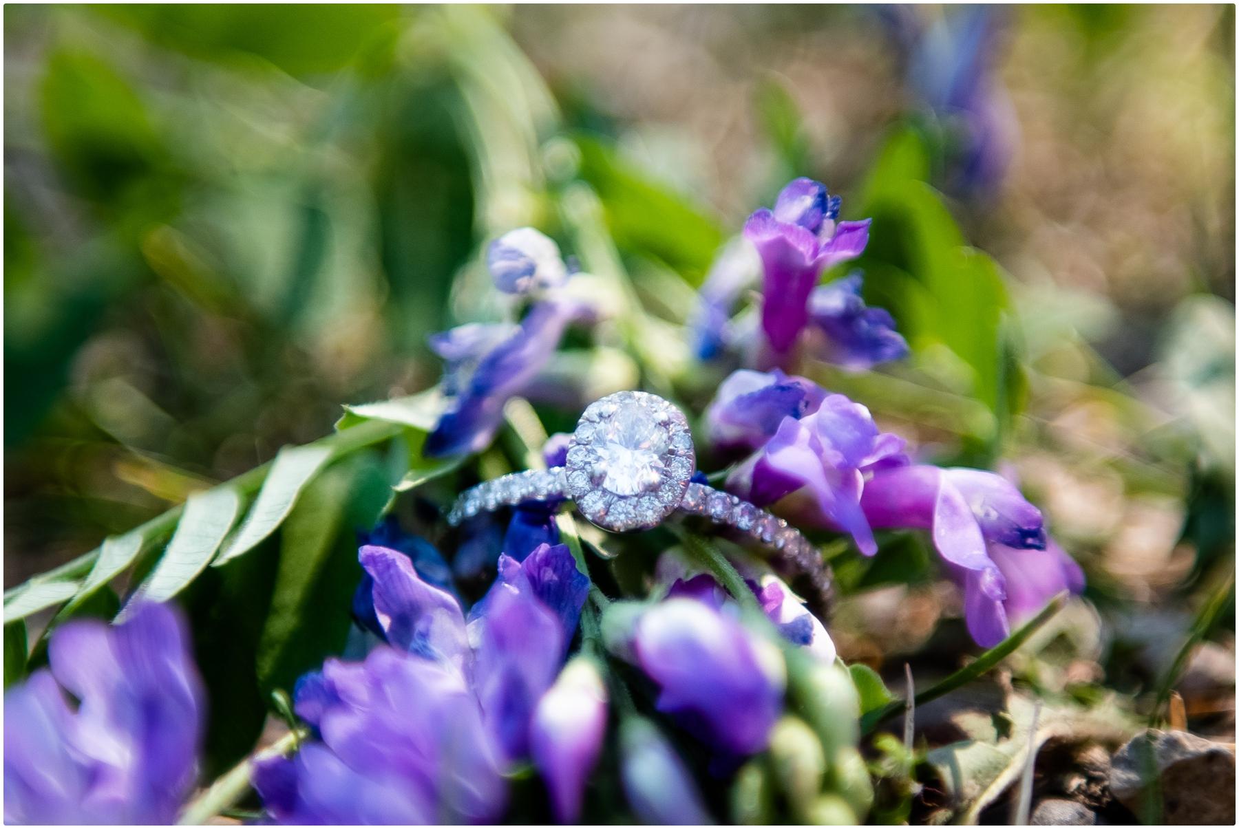 Summer Engagement Photographer Calgary